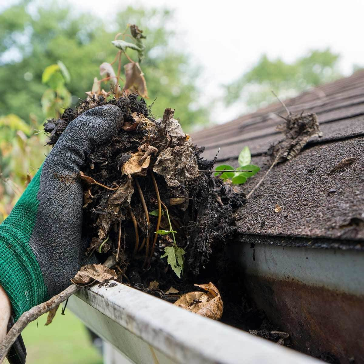 Image of Gutter Cleaning