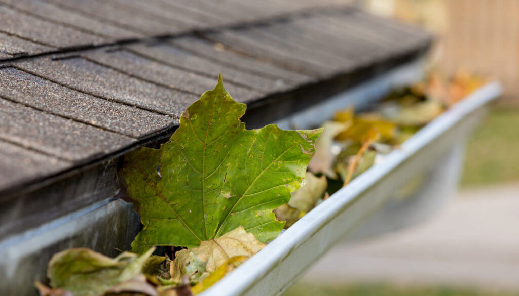 Top 3 Gutter Cleaning Methods of 2021